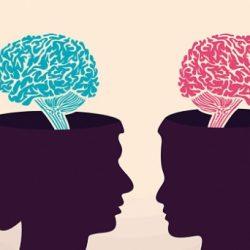 دراسة: مخ المرأة يعمل طول الوقت دون راحة عكس الرجل