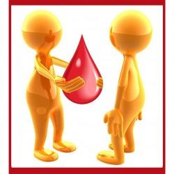 الملا يفتتح معرض أمراض الدم الوراثية بثانوية العمران