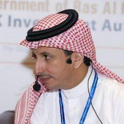 44خدمة تقدمها البوابة السعودية للموارد البشرية والمهتمين والمختصين بالقطاع