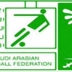 35 سباحاً سعودياً يعسكرون في الإسكندرية