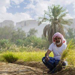 الإمارات تقدم مليار دولار وديعة مالية لمصر