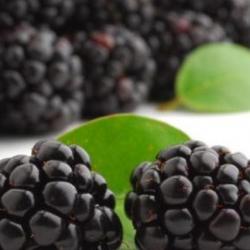 تناول العدس يساعد على تخفيض الجلوكوز في الدم
