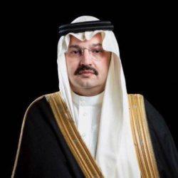 الكويت ..تستضيف الفنان الضامن في ورشة عمل
