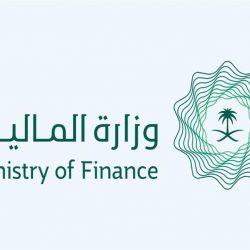 مجلس الوزراء يوافق على تأسيس شركة مساهمة تملكها الدولة لخدمات التعدين