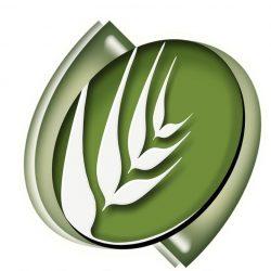 مجلس الوزراء يوافق على نظامي الزراعة و«التخصيص»