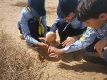 كشافة تعليم وادي الدواسر يتعرفون على التنوع البيلوجي في محمية الفصام